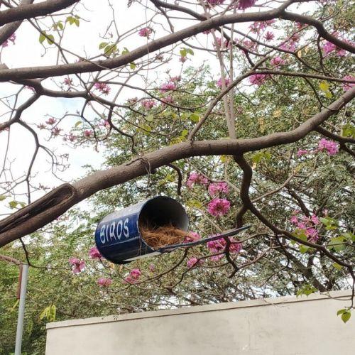 Artificial Bird Nesting